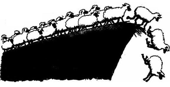 cliff-ideas-sheep.jpg