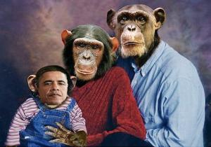Obama Monkey